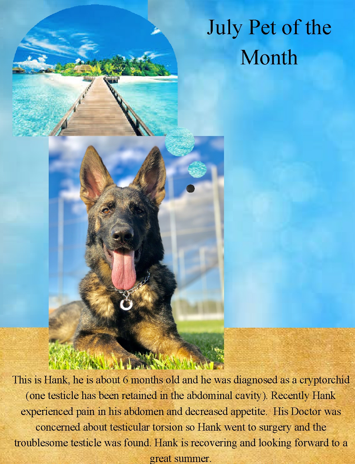 July pet of the month